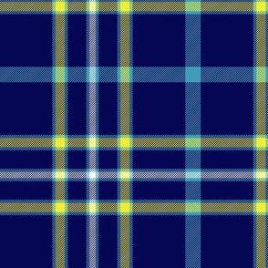 """Alaska modern flag tartan, 6"""" bright"""