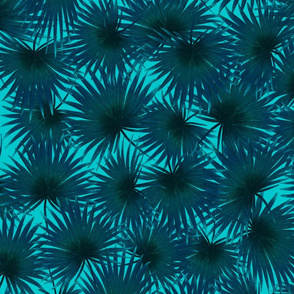 Feather palm leaves