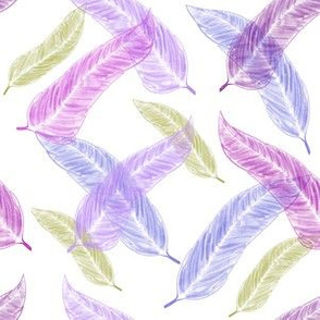 Scottish Heather Feathers