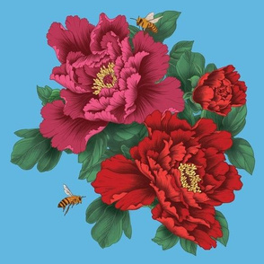 Pink and Red Peony Flowers on Blue Background - Smaller Version