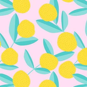 Citrus summer garden fruit and leaves botanical branch tropical spring design mint pink lemon pie