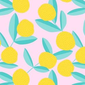 Citrus summer garden fruit and leaves botanical branch tropical spring design mint pink lemon pie