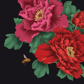 Large scale Pink and Red Peony Flowers on Black - Larger Size