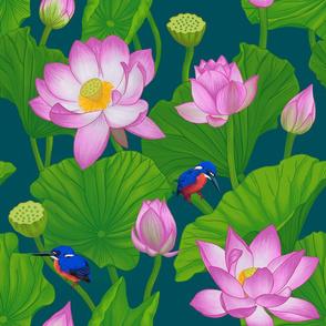 Asian Pink Lotus Flowers Amongst Lily Pads - Medium Size