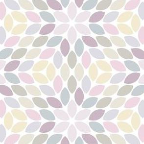 08599129 : R6Rlens4 : lilacmauve