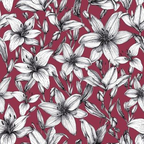 Black and white ink lilies.  Deep pink background