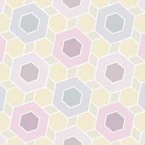 08600042 : hexagon2to1 : lilacmauve
