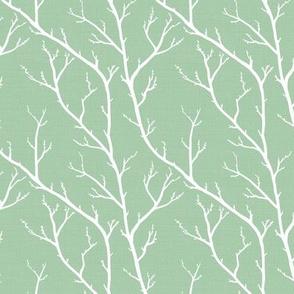 Spring Branches Desert Green
