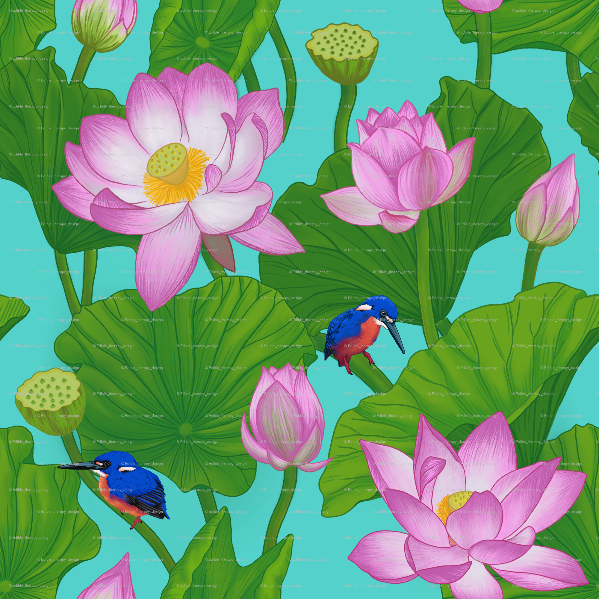 Asian Pink Lotus Flowers Amongst Lily Pads Wallpaper