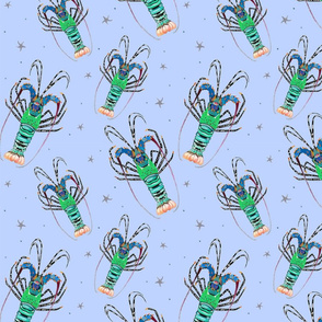 Tropical Rock Lobsters (Smaller Scale)
