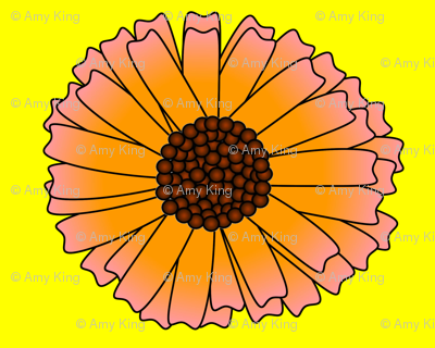 giantdaisy