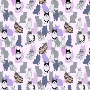 Cats Pink Ground