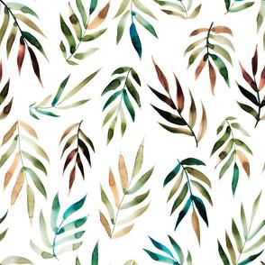 Australian palm leaves