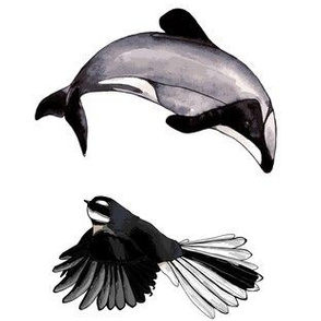 Dolphin + Fantail