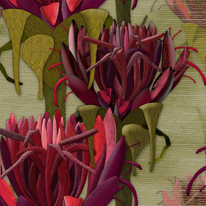 Maximalist- The Gymea Lily
