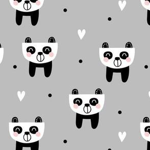 Panda dreamer