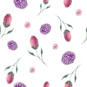 Berry Buds