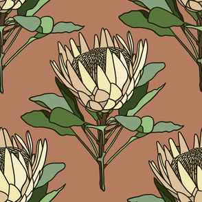 Proteas on terracotta