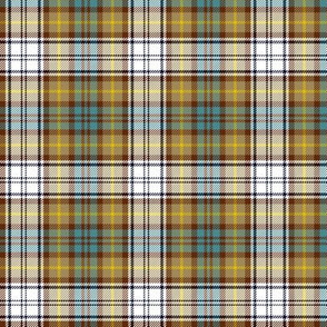 "Gordon dress tartan, weathered colors, 3"""