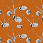 Calla lily autumn maple