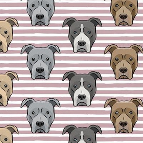 all the pit bulls - mauve stripes LAD19