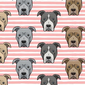 all the pit bulls - pink stripes LAD19