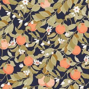 Sweet _Oranges_grove