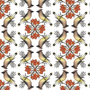 Cedar Waxwings & Mountain Ash Berries - Bird Pattern