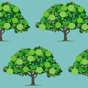 einstein tree summer