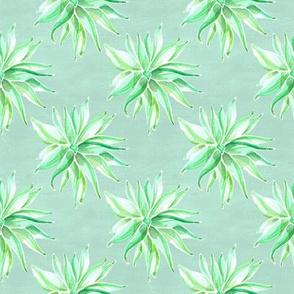 19-04F Mint Nautical Green Succulent Small