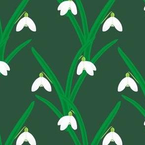 Spring Snowdrops - green