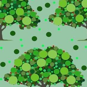 bubble tree SUA