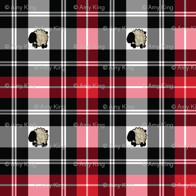sheep-plaid