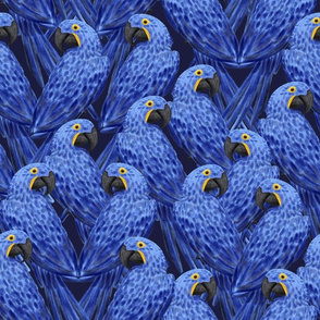 "Hyacinth Macaws Flock (navy) 14"""