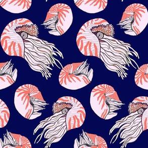 Nautical Nautilus Family
