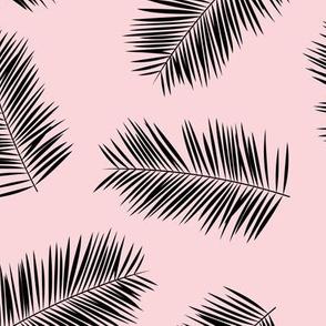 Palm leave summer jungle sweet surf theme tropical garden print pale pink black