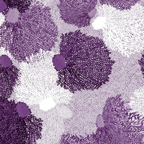 Coral Play   Purple