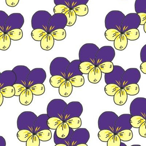 Purple pansies faces aligned