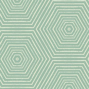 Concentric Hexagons M+M Eucalyptus by Friztin