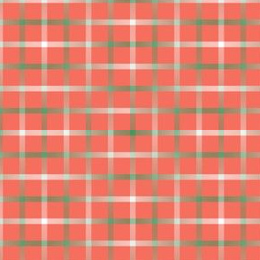 BYF1 - Disappearing Open Weave Window Pane Plaid  in Sage Gradient on Coral
