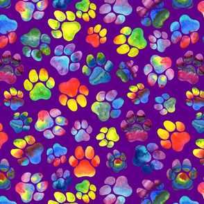 Rainbow Paw Prints on Purple