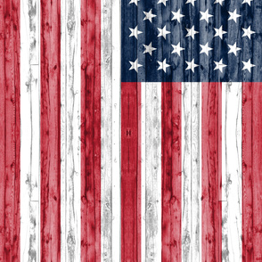 3 yard minky panel - American Flag