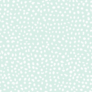 Hello Dotty // White on Robin's Egg
