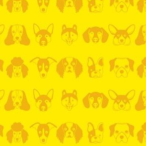 yellow dog faces