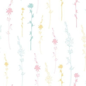 Chicory wildflowers in soft pastel pink, blue mint and yellow on white.