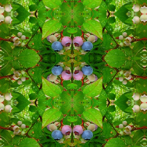 Blueberry fabric by mutterfit on Spoonflower - custom fabric