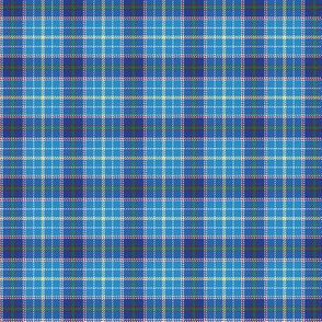 "Texas bluebonnet tartan, 1.5"" bright"