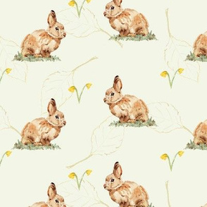 Rabbits and daffodils