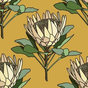 Proteas on mustard