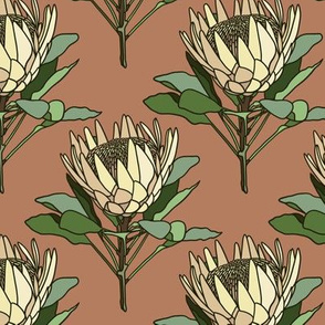 Proteas on terracotta- small